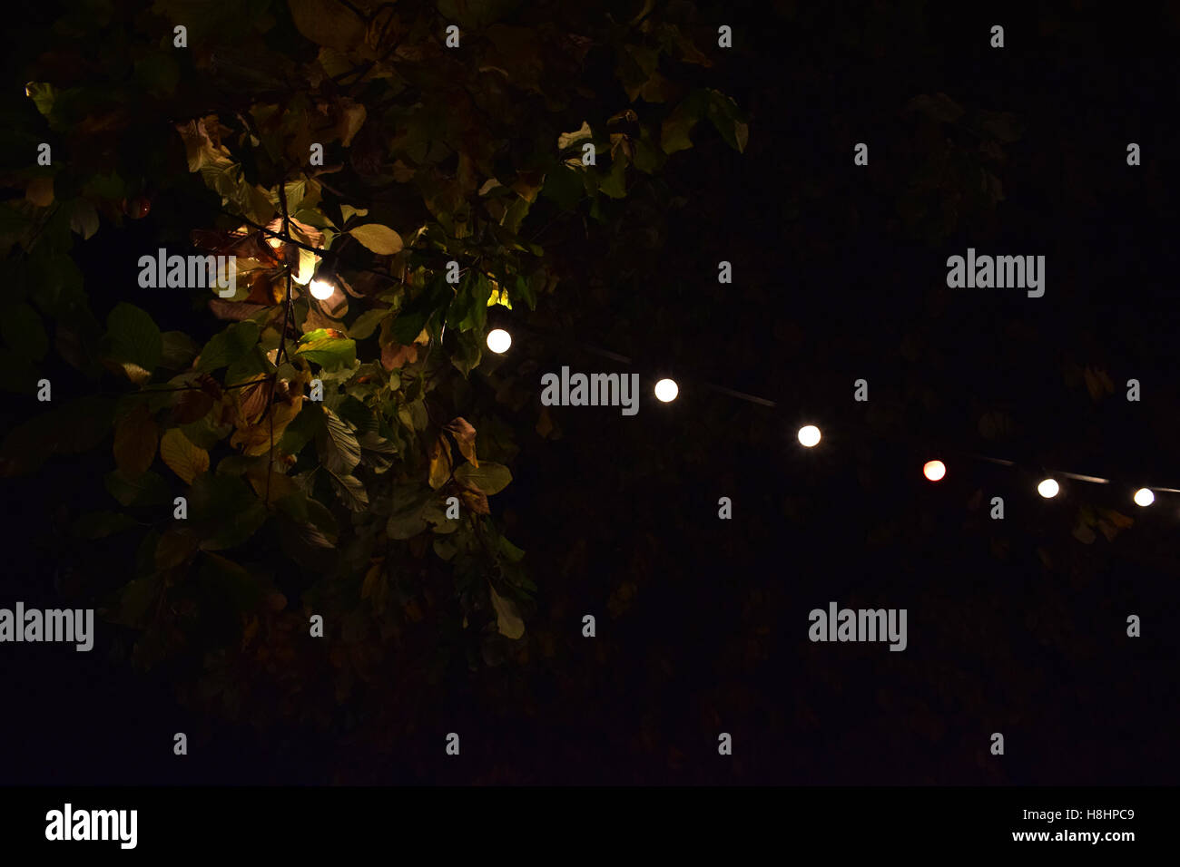 Fairy lights outdoors stock photos fairy lights outdoors stock outdoors lights and leaves stock image mozeypictures Gallery