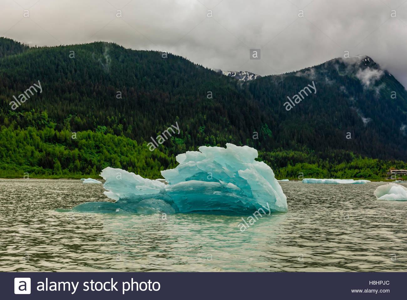Floating ice, Mendenhall Lake, Juneau, Alaska USA. - Stock Image