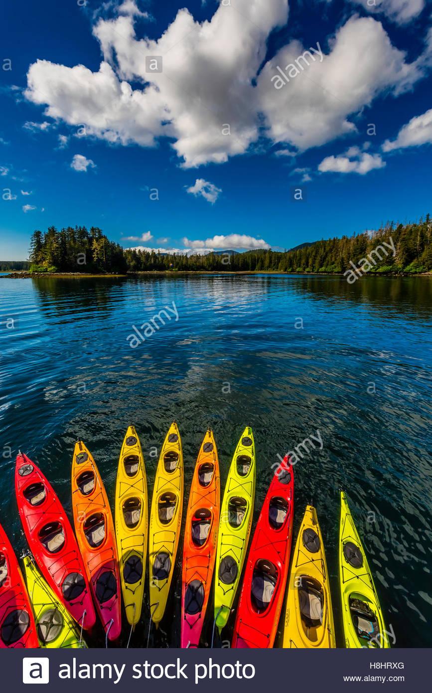 Row of kayaks, Un-Cruise 'Wilderness Explorer', Magoun Islands State Marine Park, Krestof Sound, Alaska - Stock Image