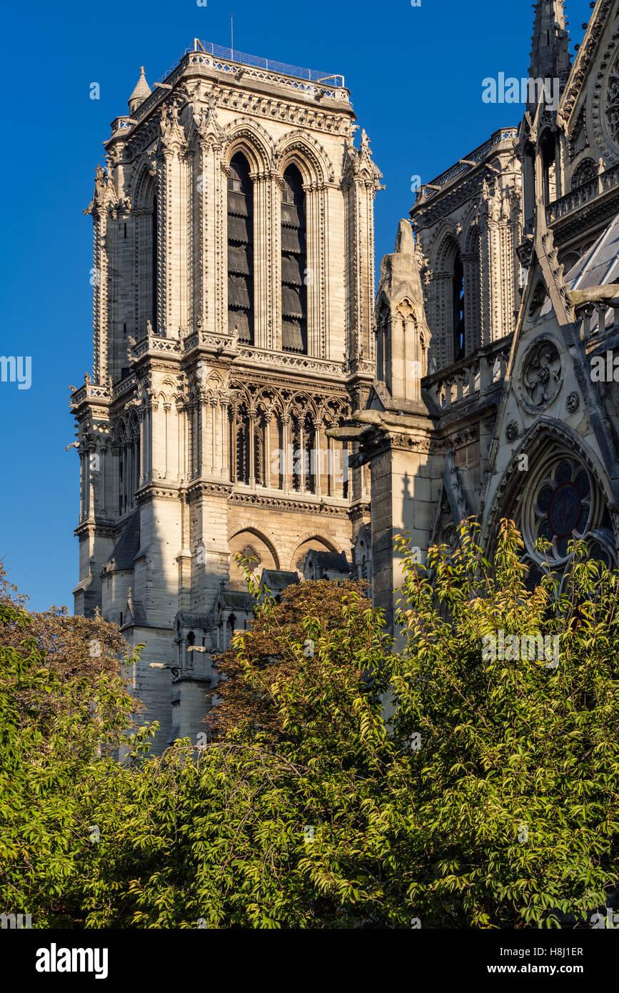 Architectural detail of Notre Dame de Paris Cathedral tower in summer morning light. Ile de la Cite, Paris, France Stock Photo