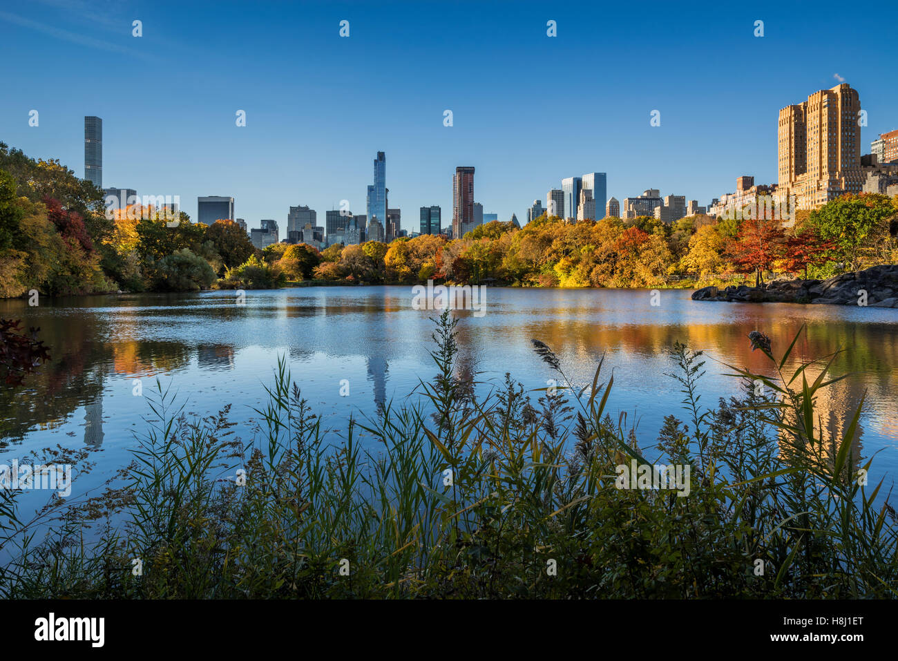 Fall in Central Park at The Lake with Midtown and Upper West Side skyscrapers. Autumn foliage in New York City - Stock Image