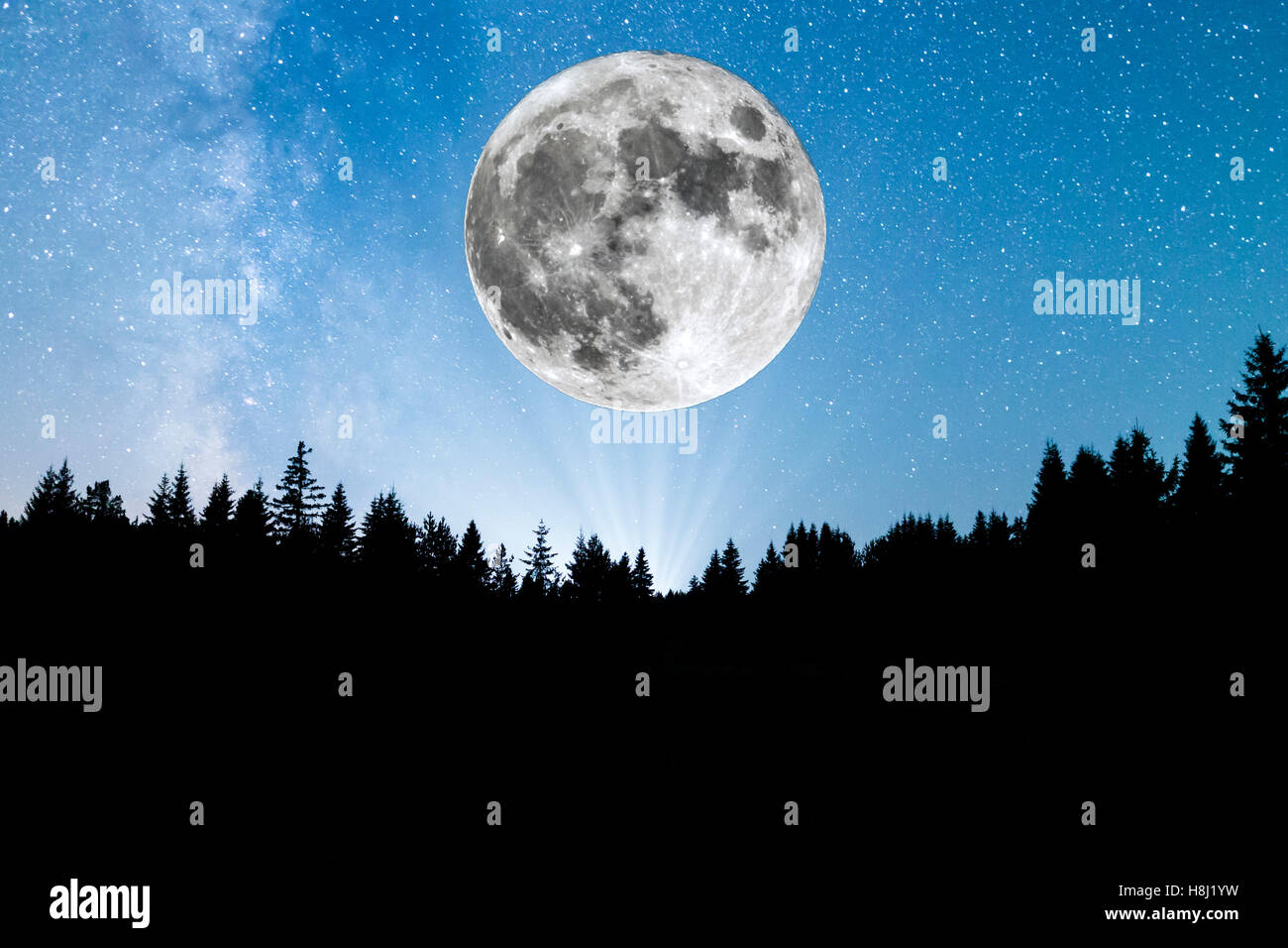 Super Moon. A view of the stars of the Milky Way with a silhouette of a pine trees forest in the mountain. Stock Photo