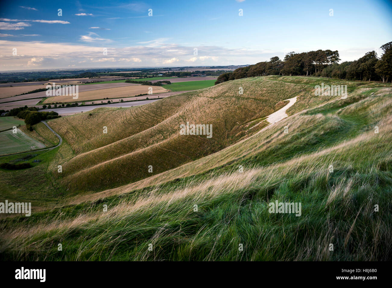 The Cherhill White Horse from Oldbury Iron Age hill fort in Wiltshire, UK Stock Photo