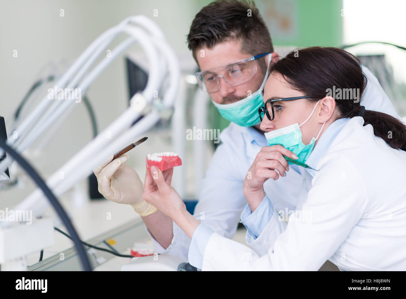 Busy young stomatology students working carefully on anatomical models Stock Photo