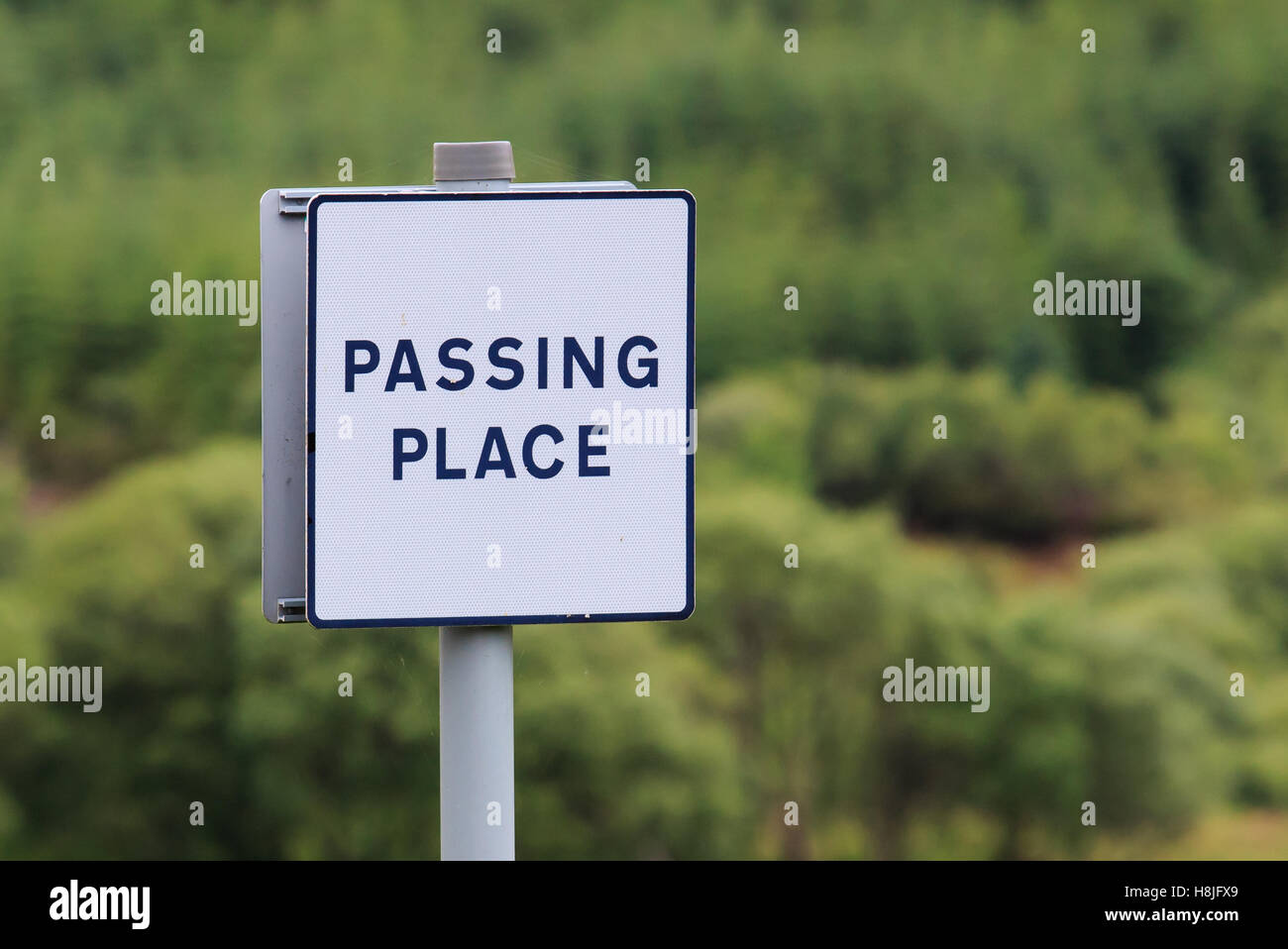 Square white road sign advising passing place - Stock Image