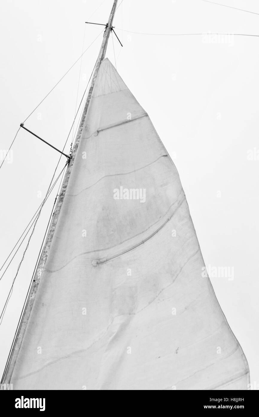 Sail of a sailing boat against sky - Stock Image