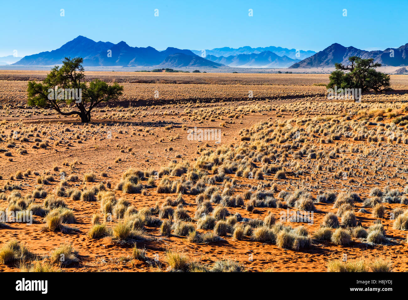 Sossousvlei landscape with distant blue mountains in an arid environment - Stock Image