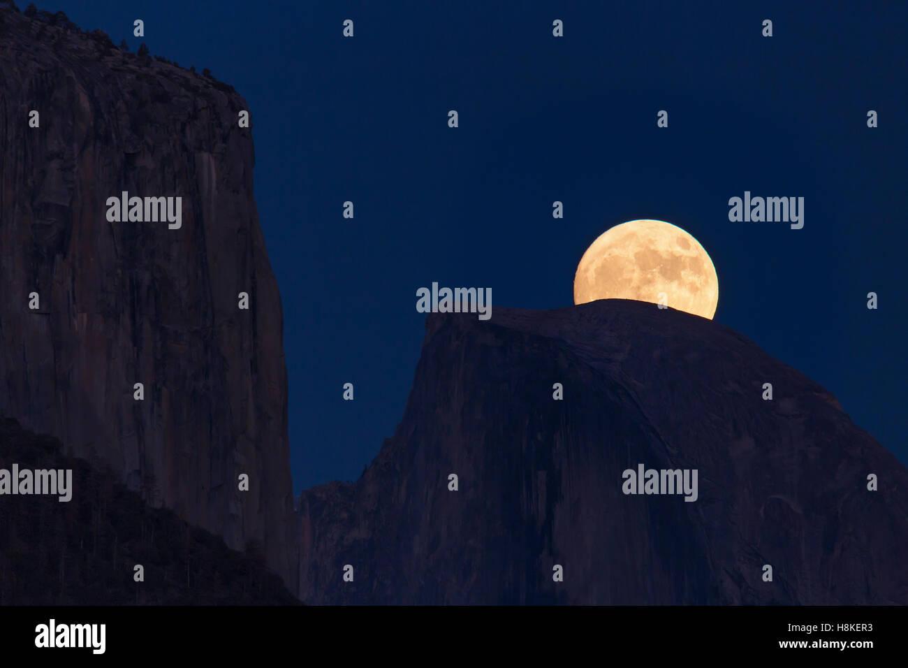 Yosemite National Park, USA. 13th Nov, 2016. Super Moon Rising Over Half Dome in Yosemite National Park, USA. Credit: Stock Photo