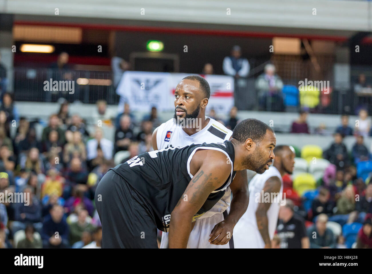 London, UK  13th November, 2016.    London Lions' lose 88-81 to Newcastle Eagles in BBL league basketball match, - Stock Image