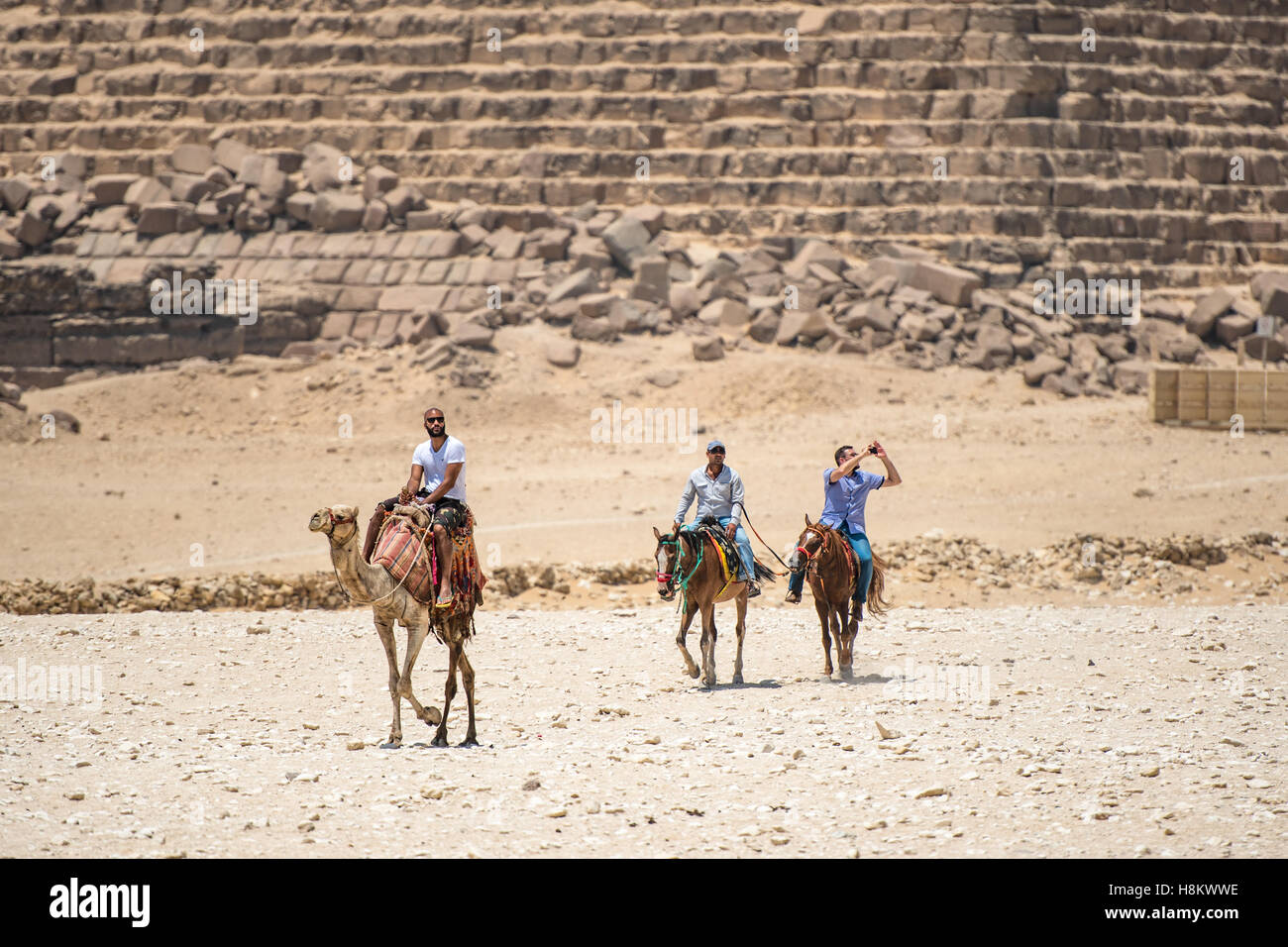 Cairo, Egypt Camel drivers on horseback and a tourist riding a camel walking through the desert with the Great Pyramids - Stock Image
