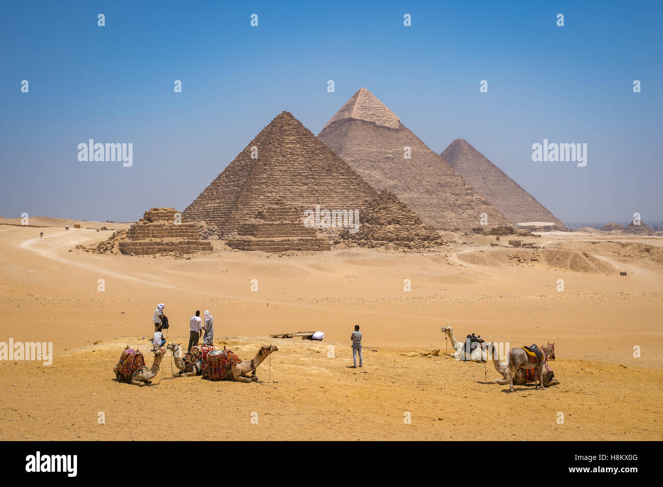 Cairo, Egypt Tourists and camel drivers with their camels resting in the desert with the three Great pyramids of - Stock Image