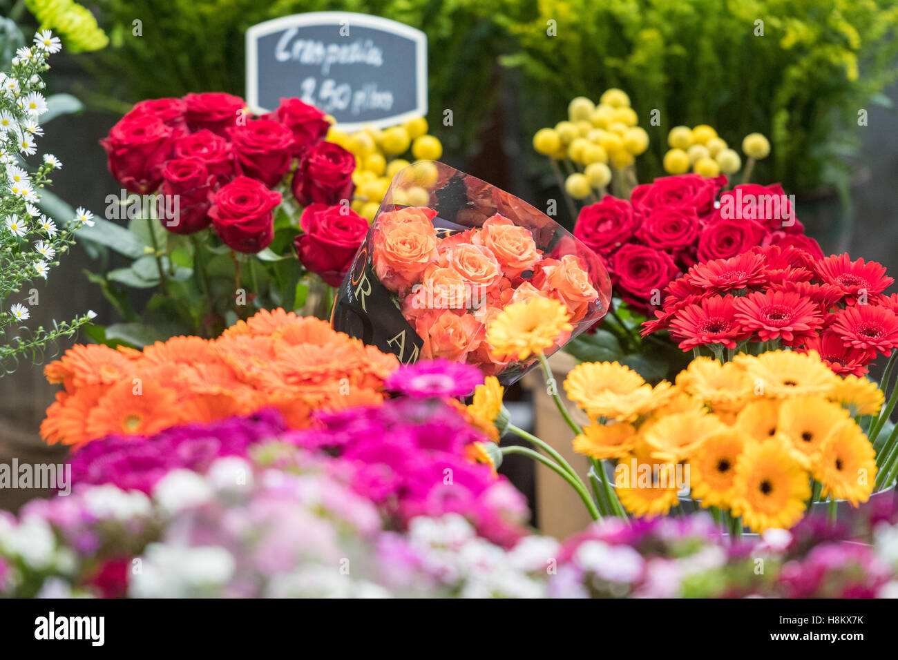 Amsterdam Netherlands Close Up Of Bouquets Of Roses And Other Types