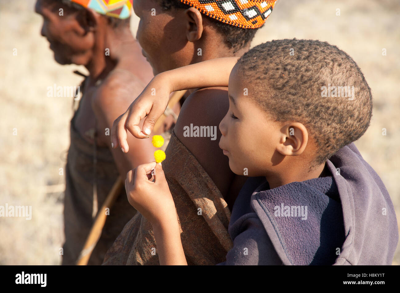Portrait of San or Bushman child playing with Acacia flowers - Stock Image