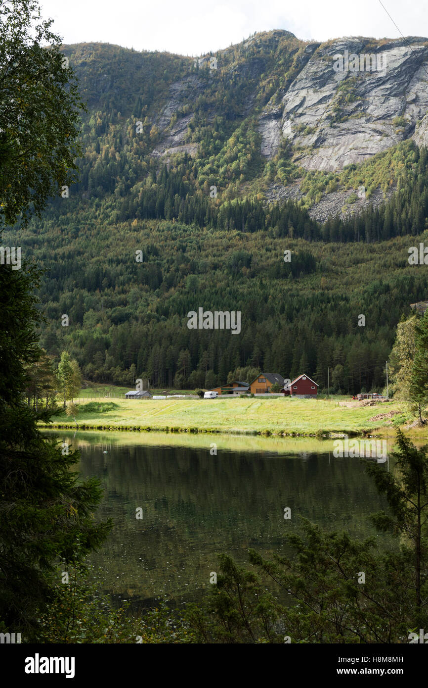 Houses in the valley in Valle with an isolated roof by plants and moss, Norway, Setesdal, Norway - Stock Image