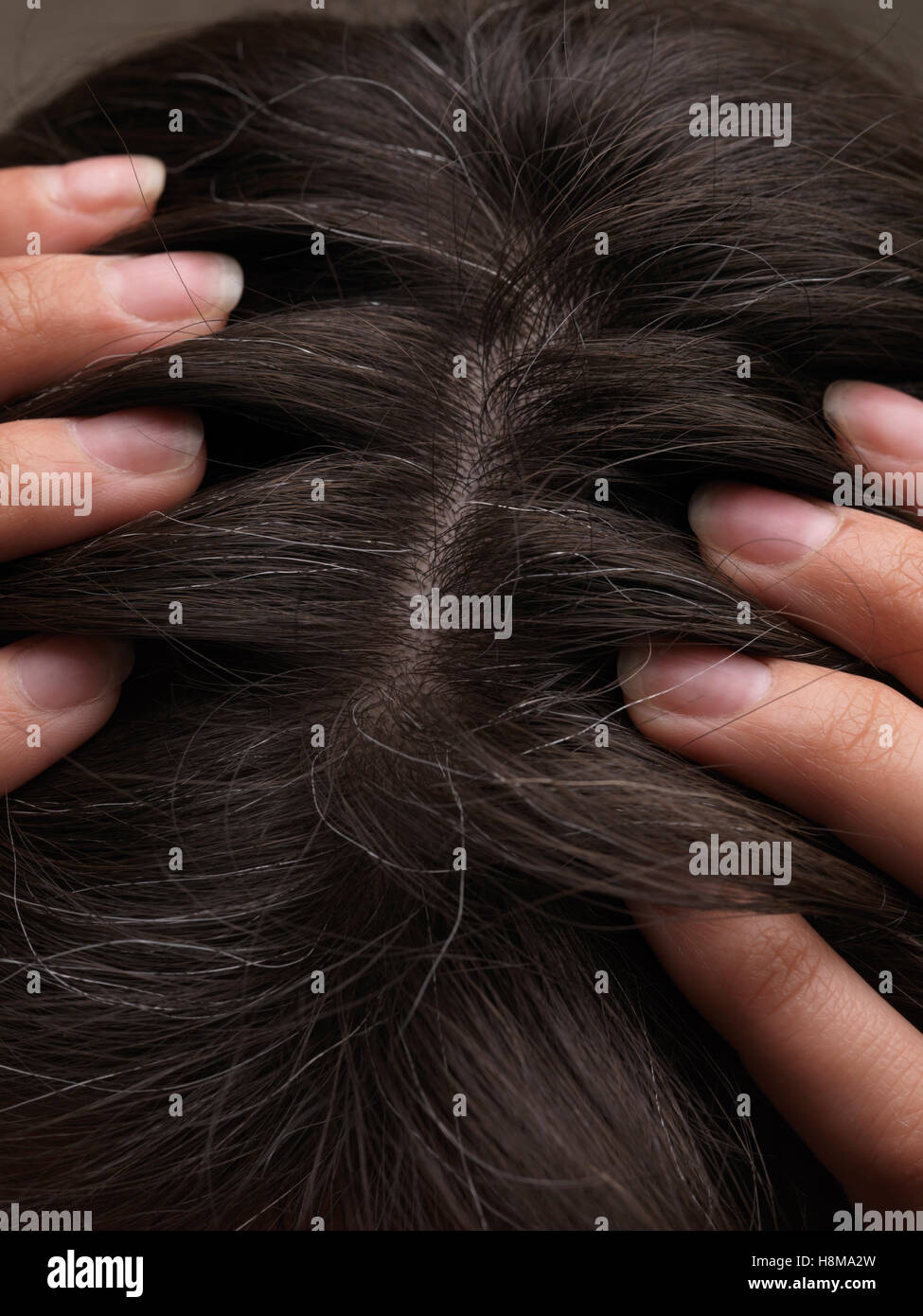 Grey hairs on a woman's head - Stock Image
