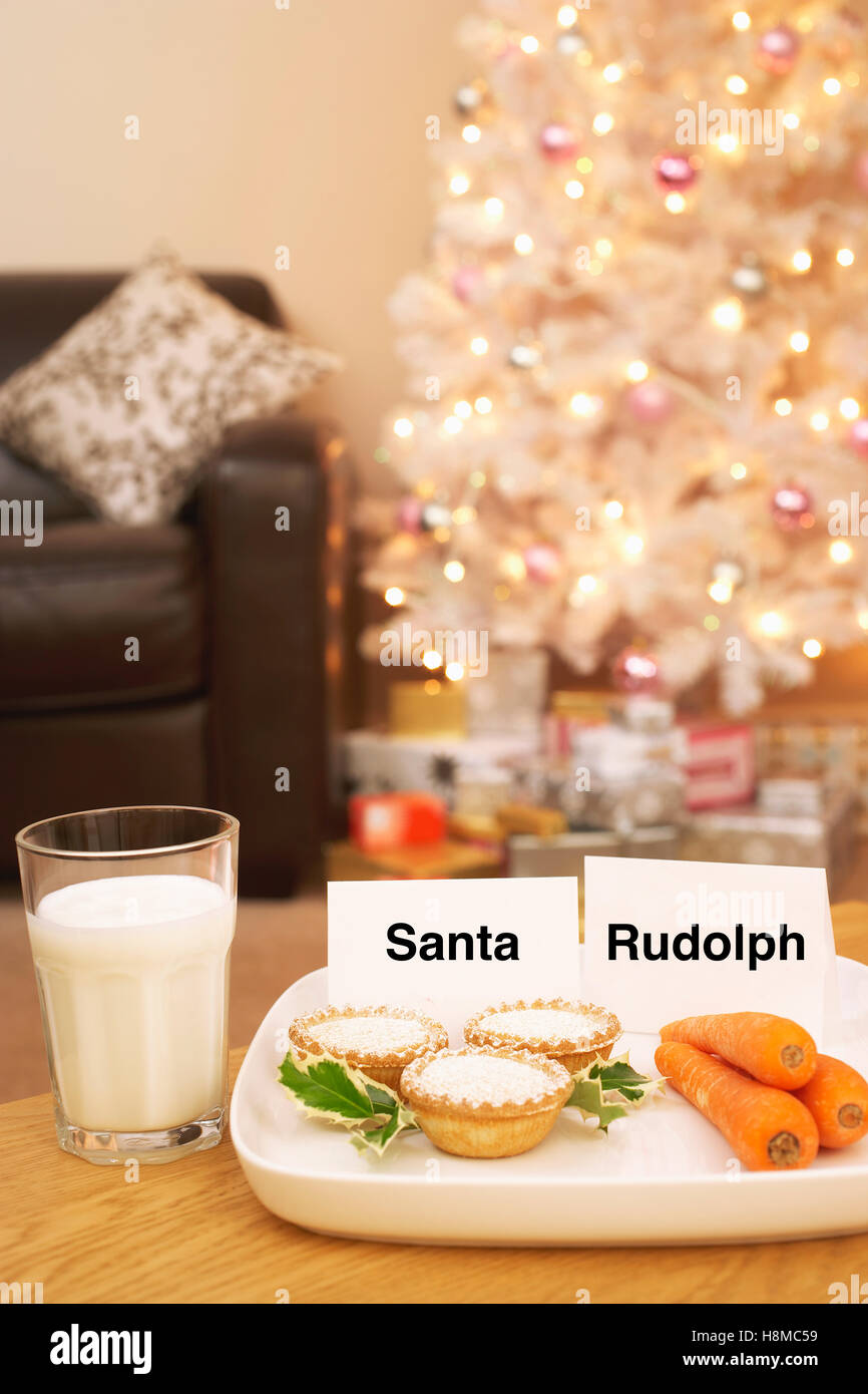 Food for Santa and Rudolph - Stock Image