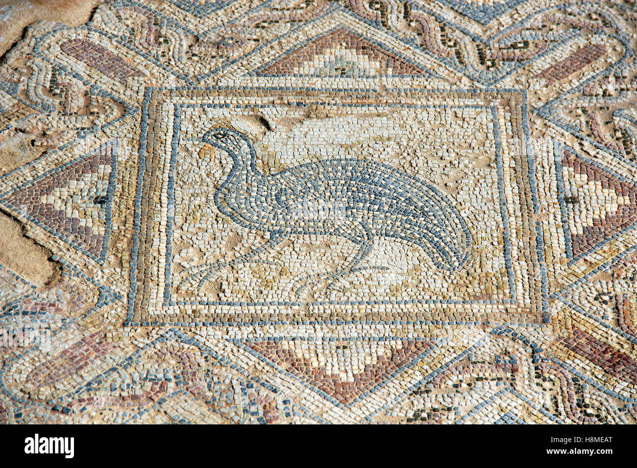 The fragment of ancient mosaic in Kourion, Cyprus Stock Photo