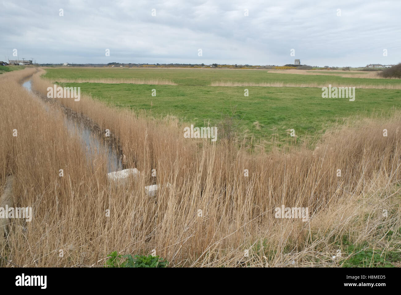 Looking out from Southwold harbour towards the town over the grassland flood plains across from the river Blyth Stock Photo