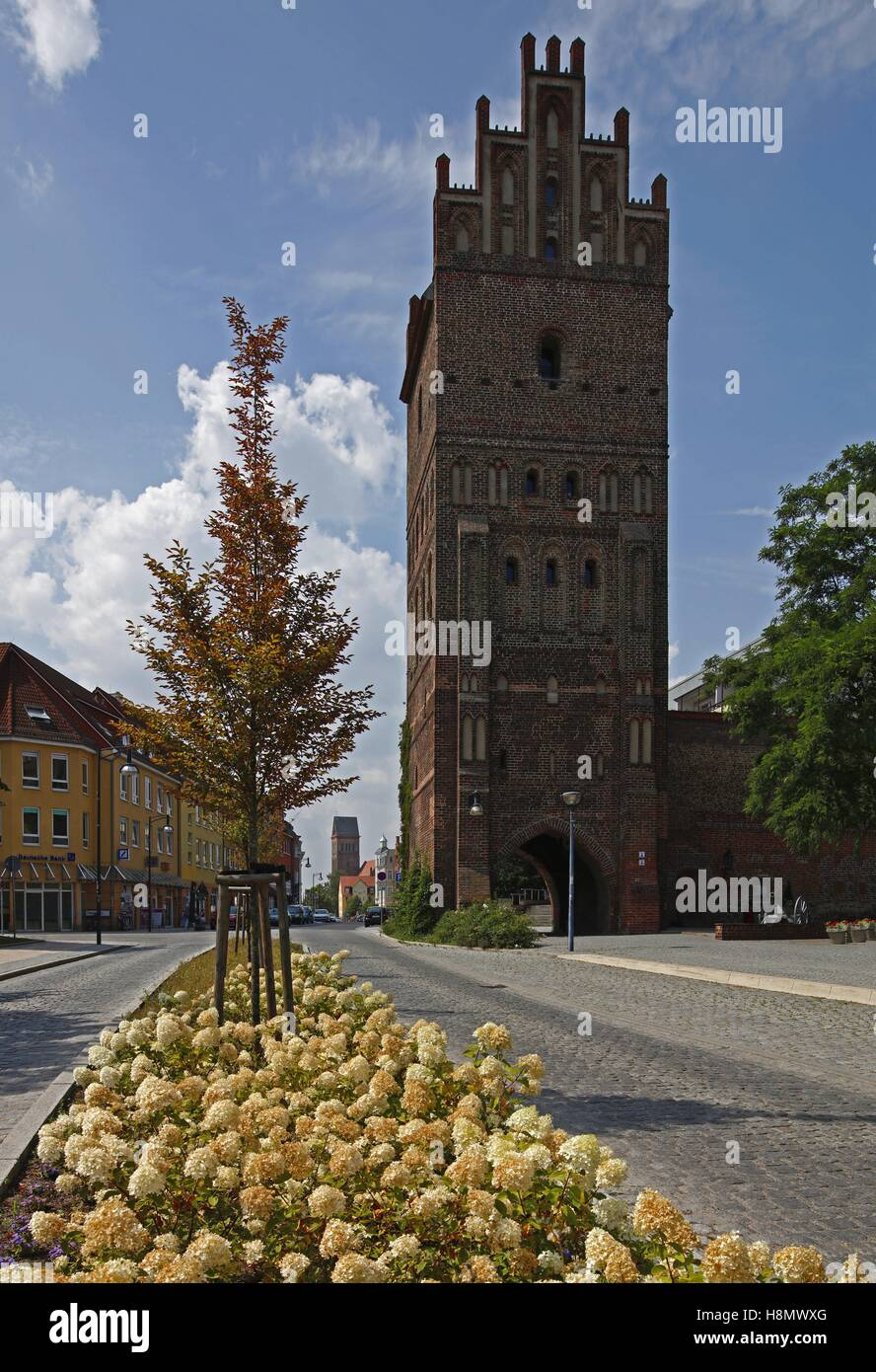 The stone gate is a landmark of Anklam, Anklam, Mecklenburg-West Pomerania, Germany,  The 32-metre-high Anklamer - Stock Image