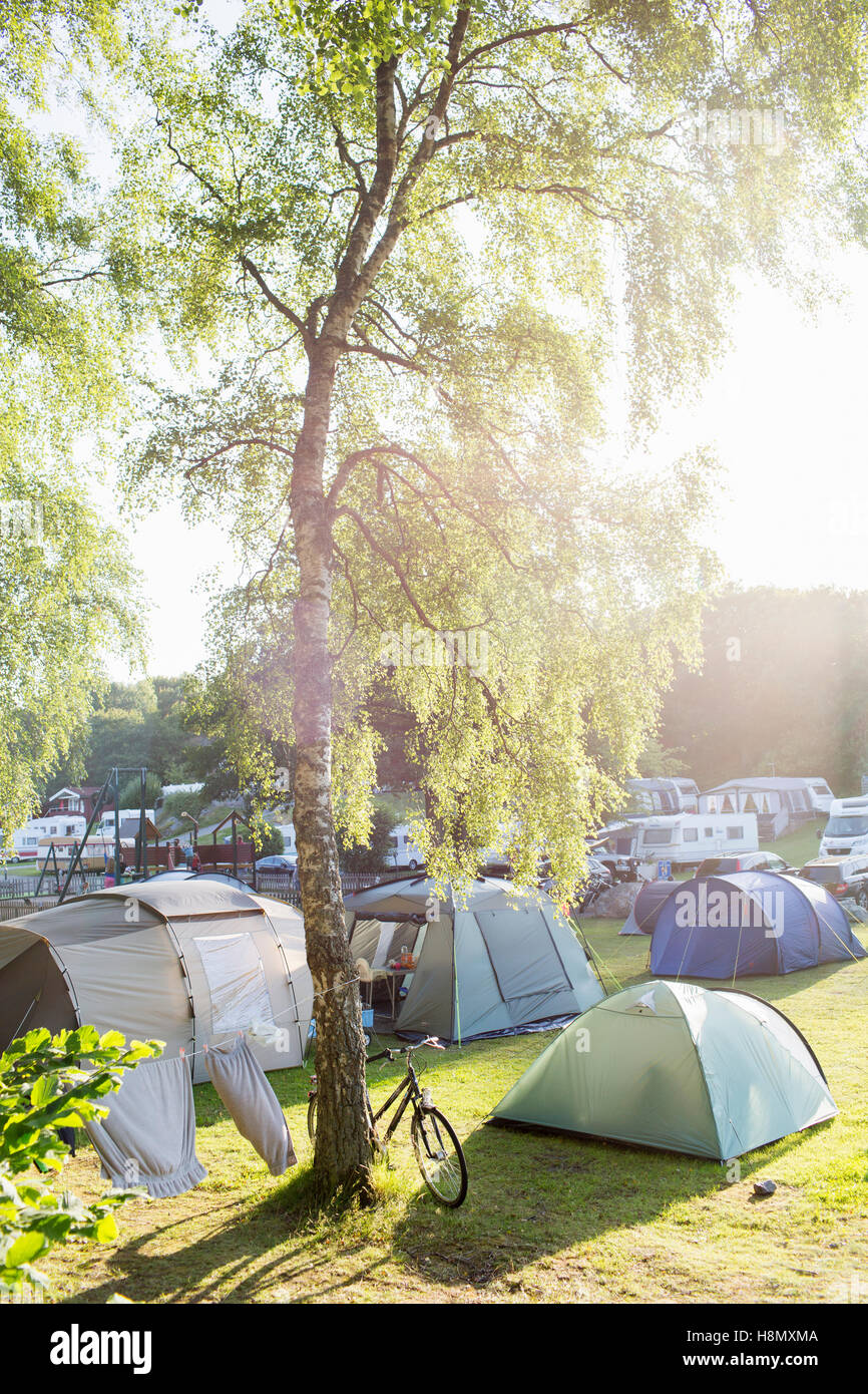 Tents at campsite - Stock Image