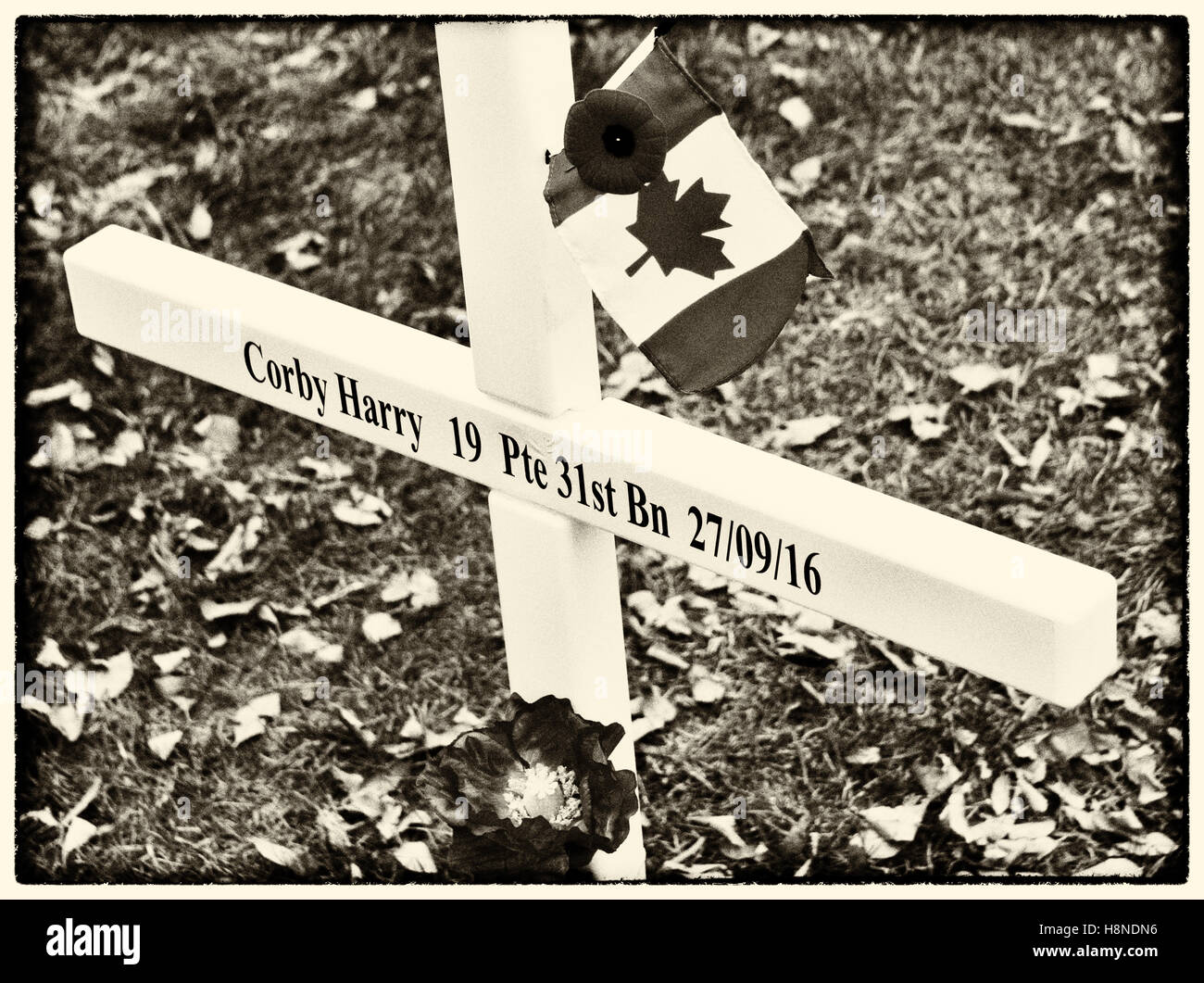 Remembrance Day Cross, Calgary AB. - Stock Image