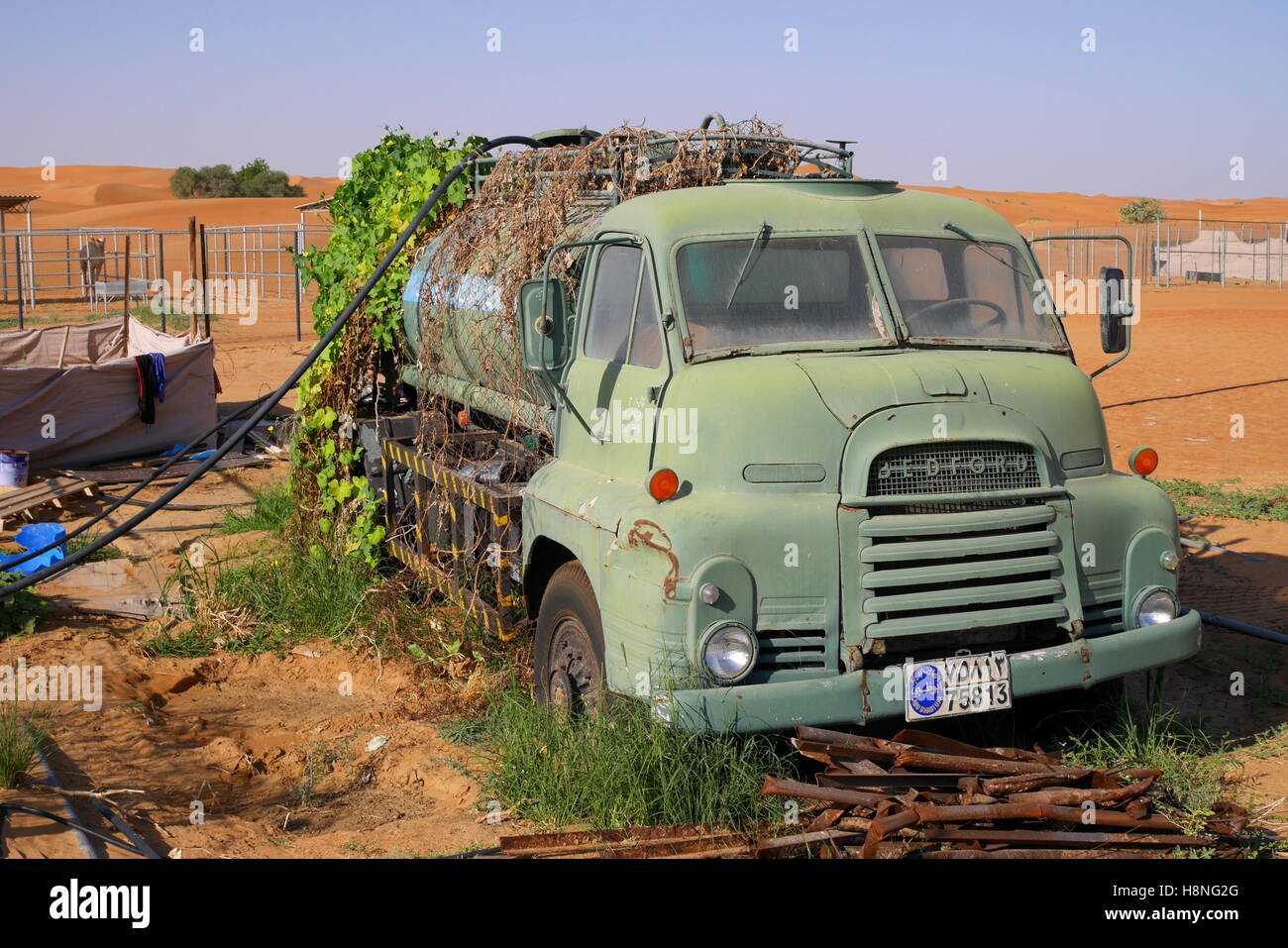Nineteen fifties Bedford tanker, being used as a static water tank on a camel farm, Abu Dhabi Emirate, UAE - Stock Image