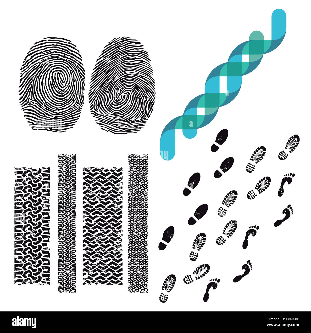Keeping track of tracks, genetic, fingerprint, footprint, - Stock Image