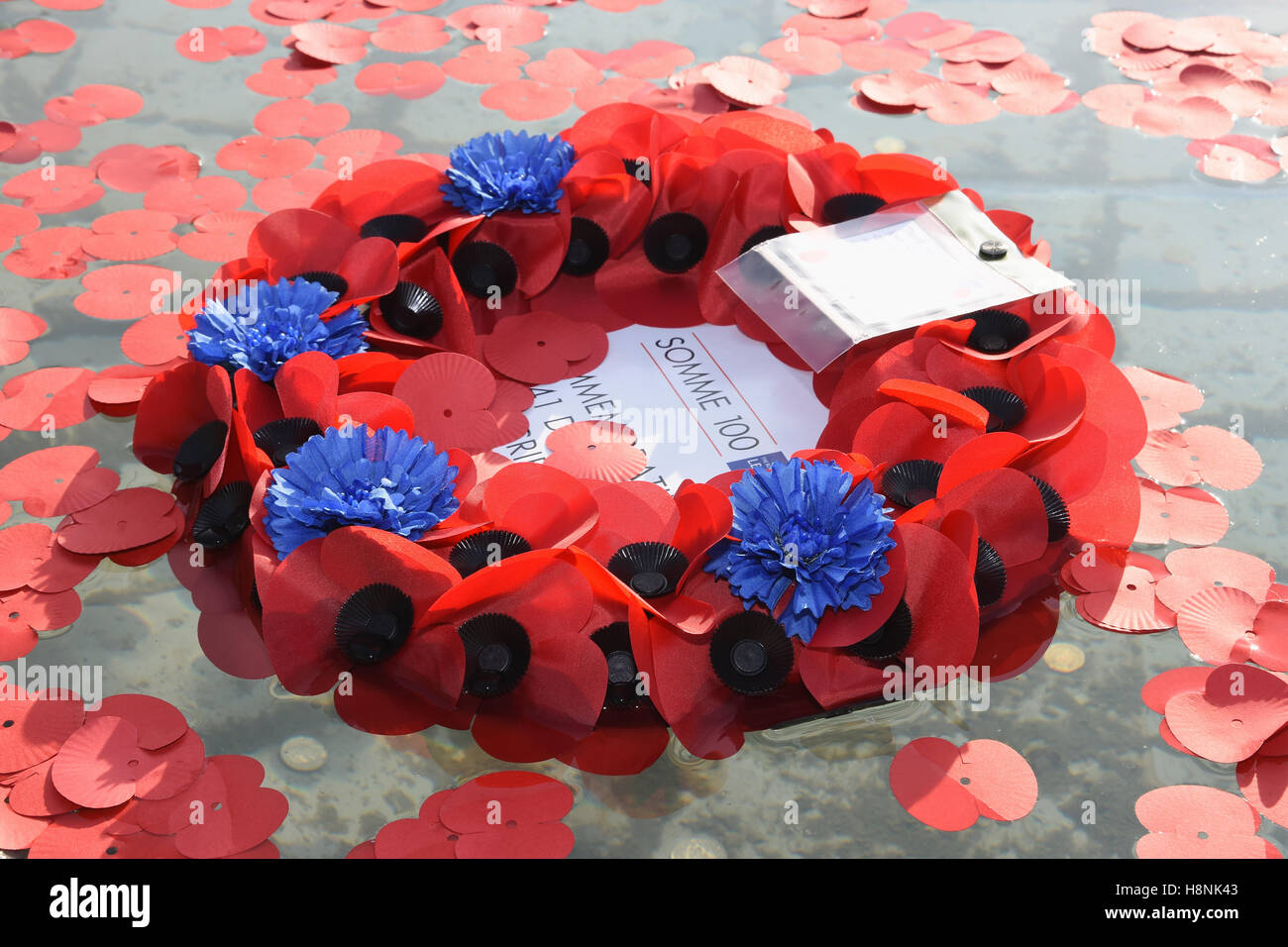 Poppy Wreath,Armistice Day,The Royal British Legion,Silence in the Square,Trafalgar Square,London.UK - Stock Image