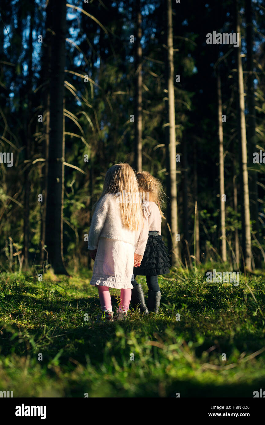 Two girls (2-3, 4-5) standing in spruce forest - Stock Image