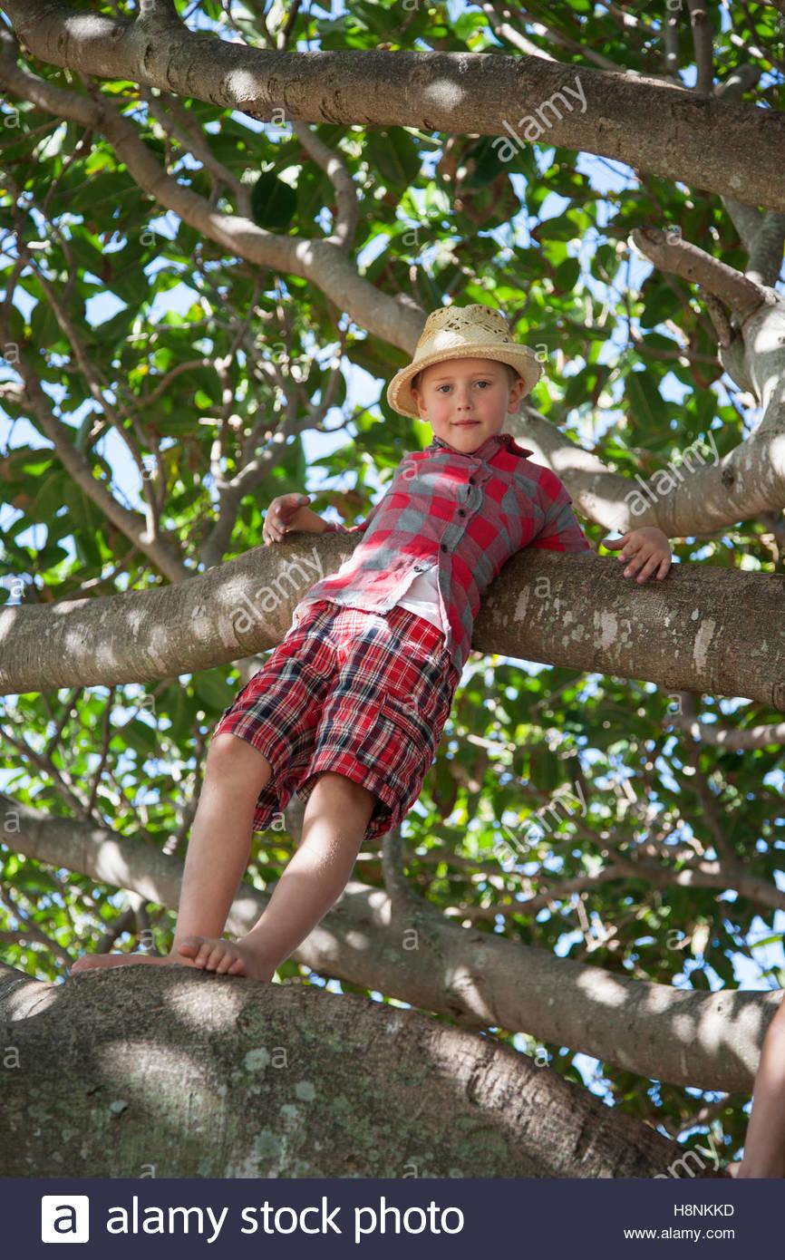 Boy (6-7) standing on tree branch Stock Photo