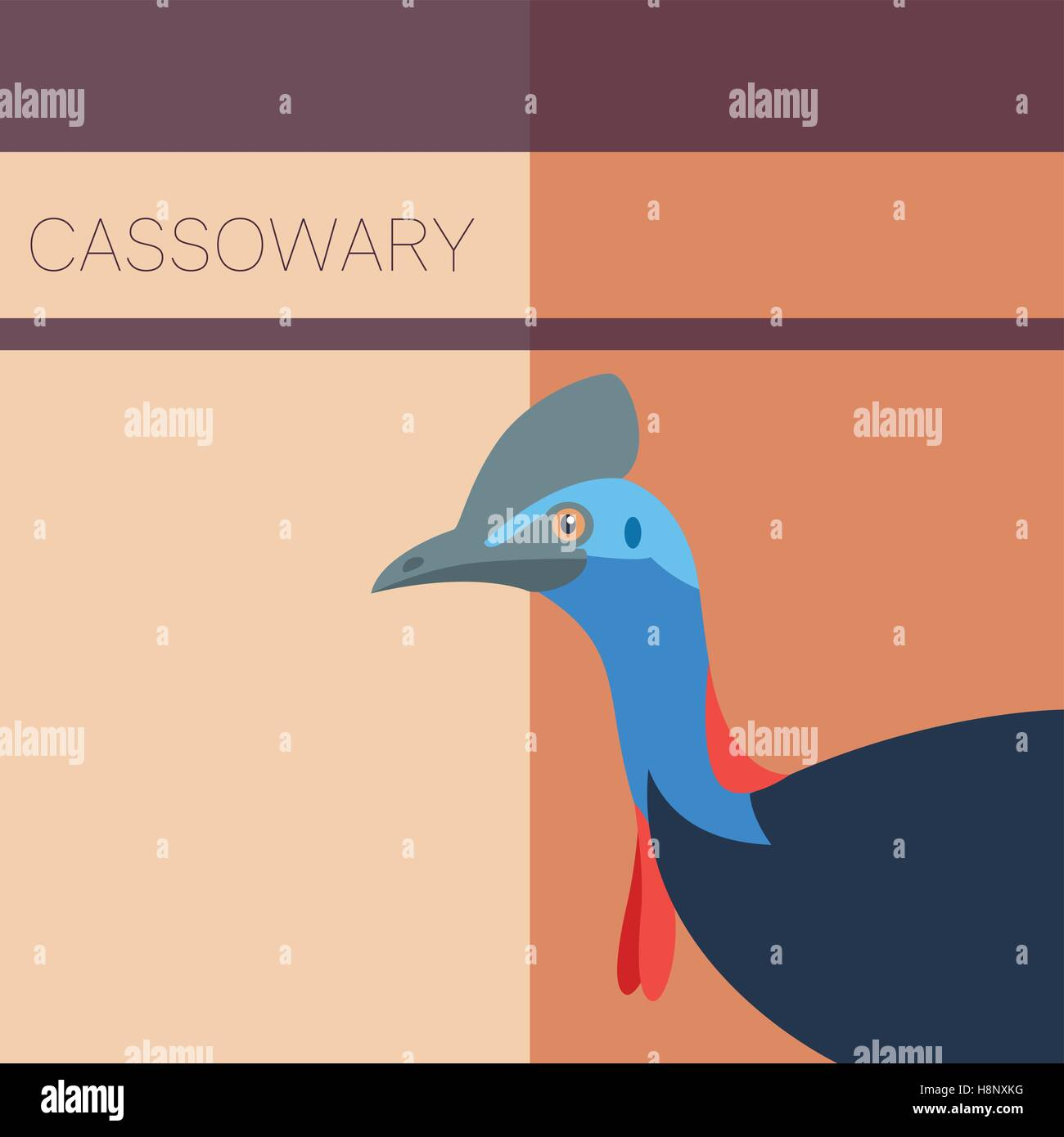 Vector image of the Cassowary flat postcard - Stock Vector