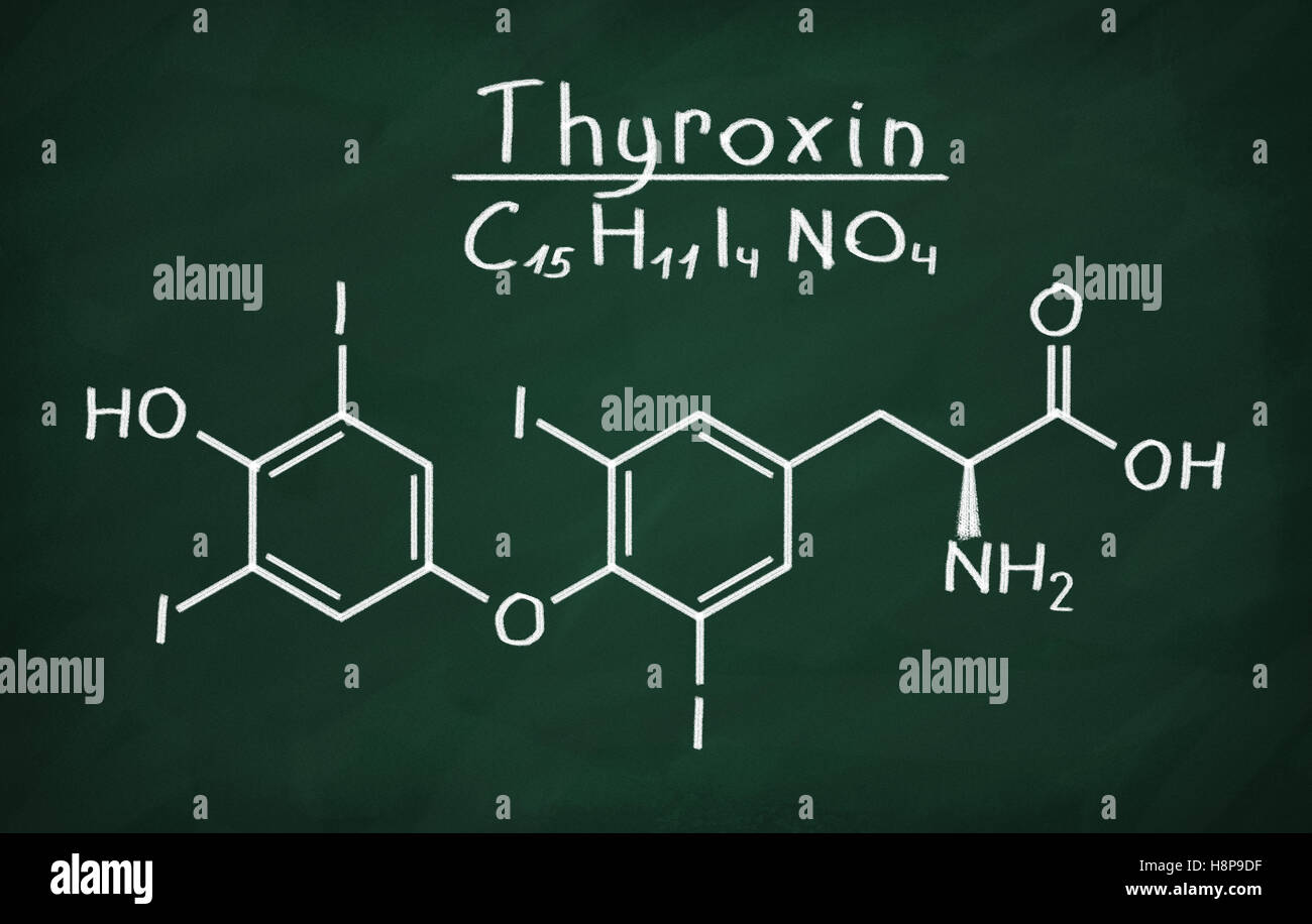 Structural model of Thyroxin on the blackboard. Stock Photo