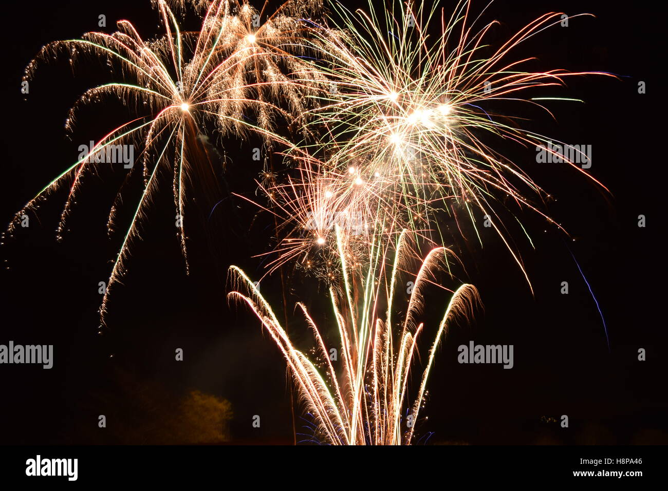Fireworks, Feathered effect - Stock Image