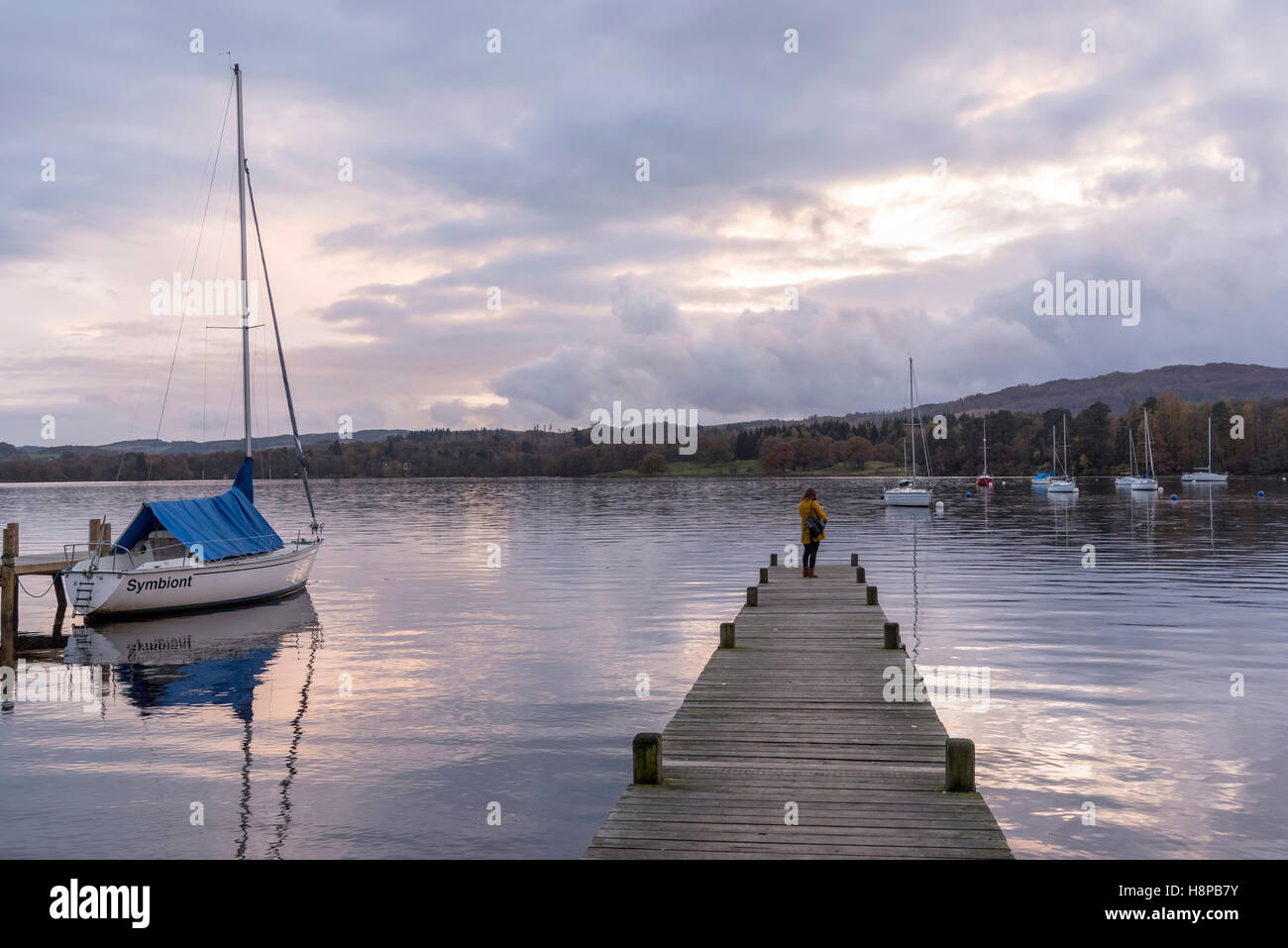 Lake Windermere lake district Cumbria North West England. Autumn colours Ambleside Waterhead Lone figure solitary - Stock Image