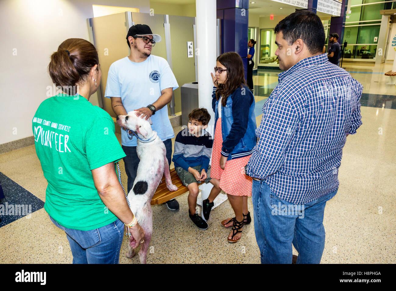 Shelter Dog Adoption Miami
