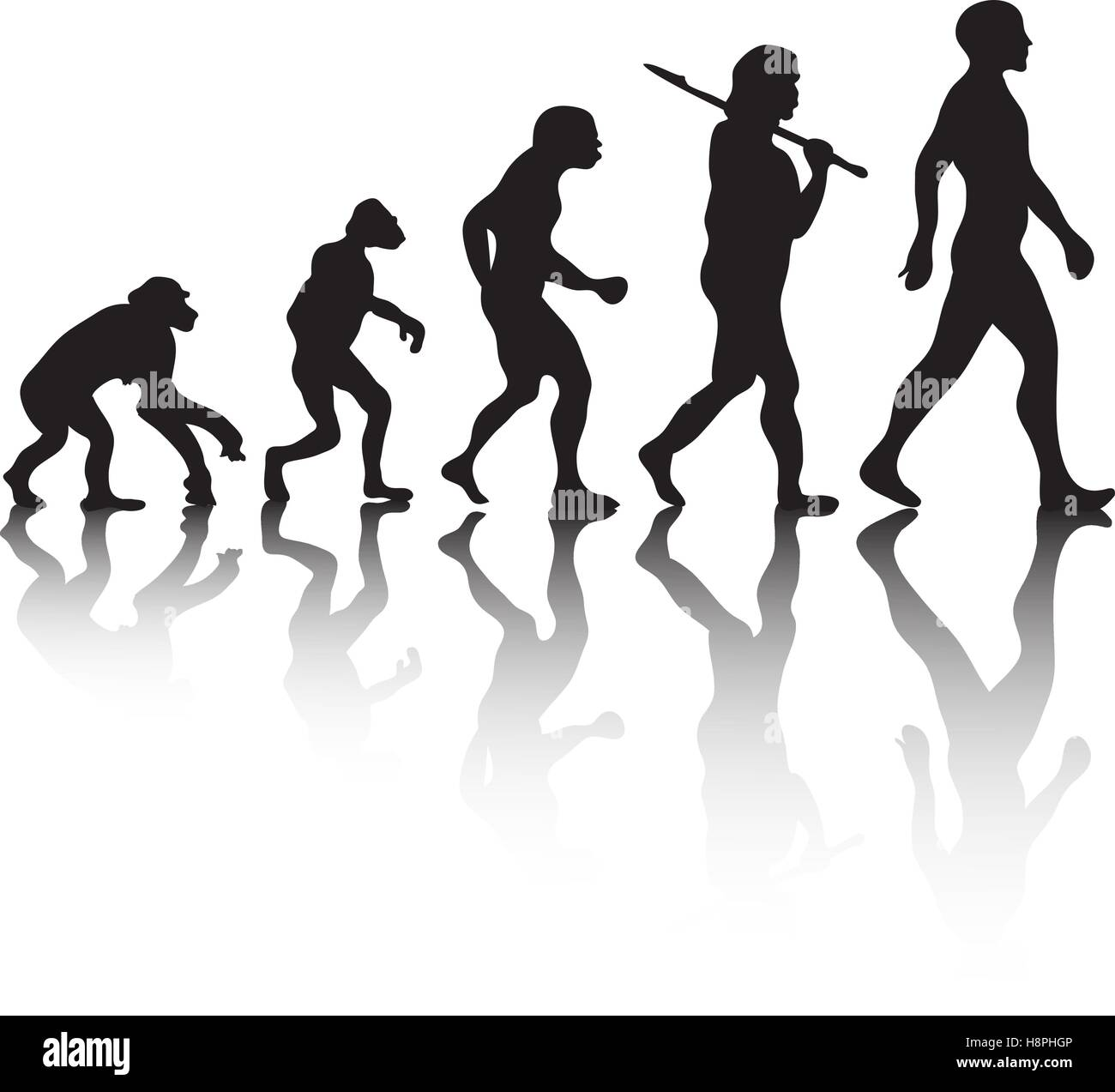 The evolution, silhouette people. Darwin s theory. Vector illustration - Stock Image