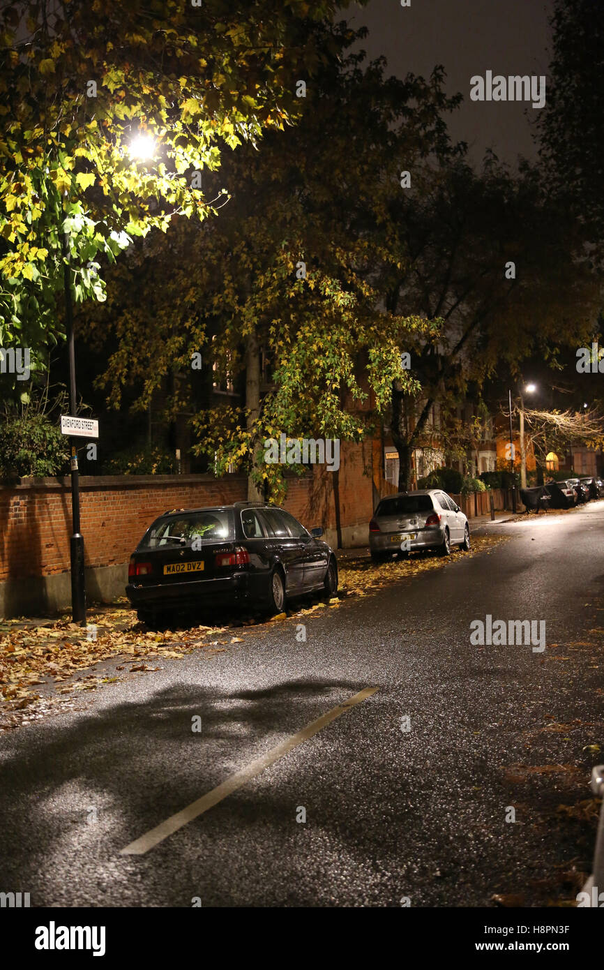 Fallen Autumn leaves cover the pavements and road in a typical South London street after dark on a wet night - Stock Image