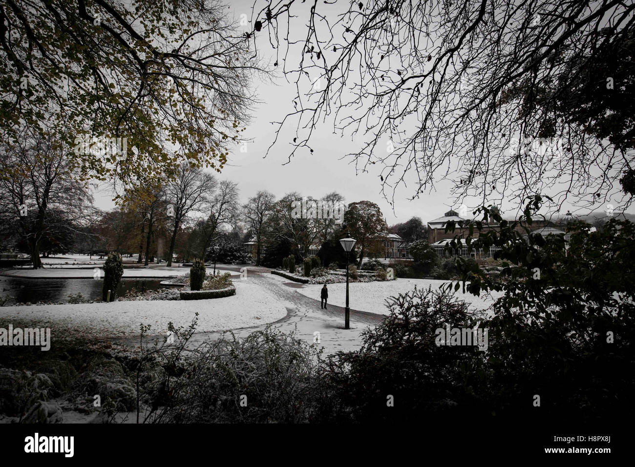 Snow in Buxton , Derbyshire , England today (Wednesday 9th November 2016). A woman walks her dog through Pavilion - Stock Image