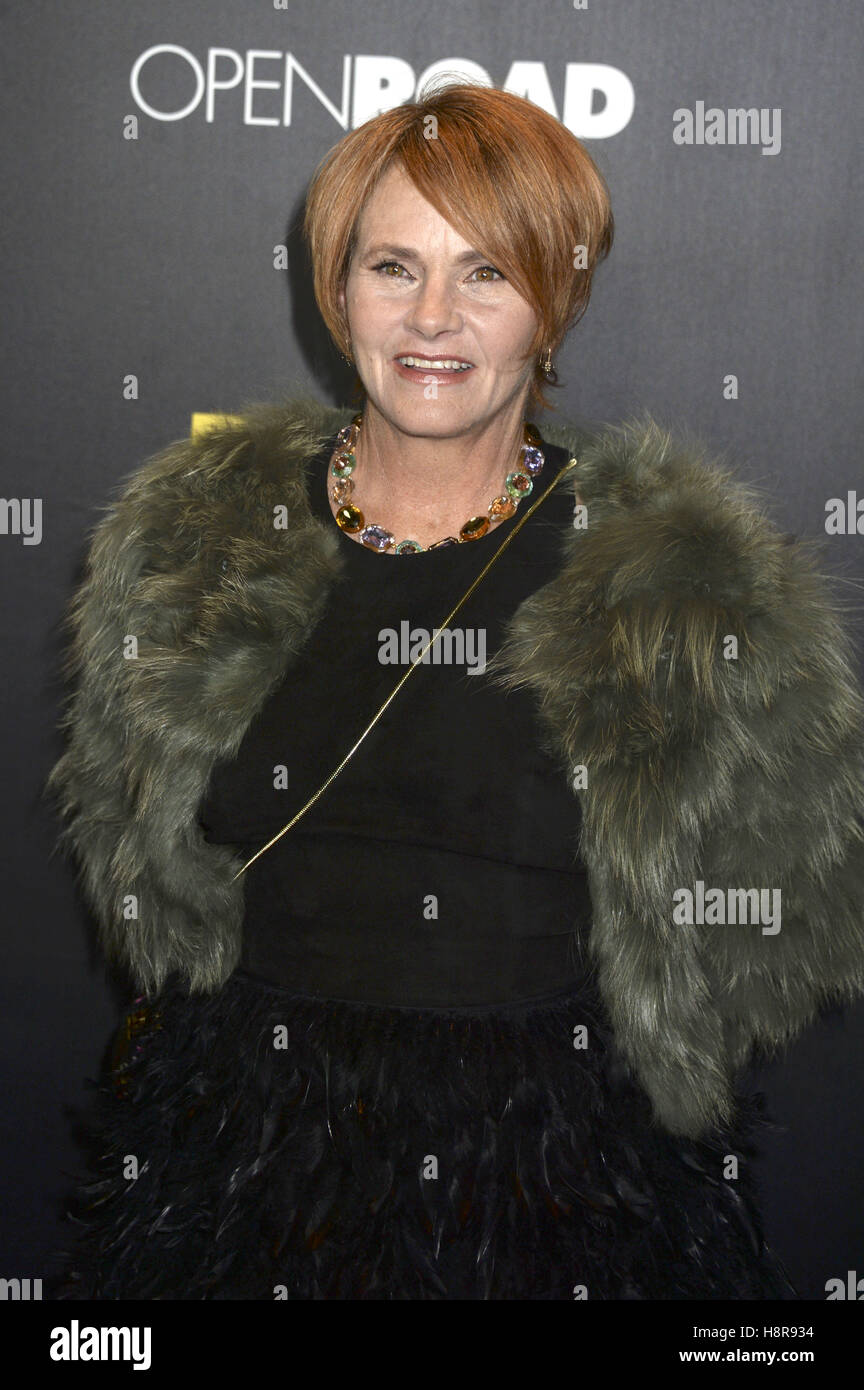 New York City. 14th Nov, 2016. Shawn Colvin attends the 'Bleed For This' premiere at AMC Lincoln Square - Stock Image