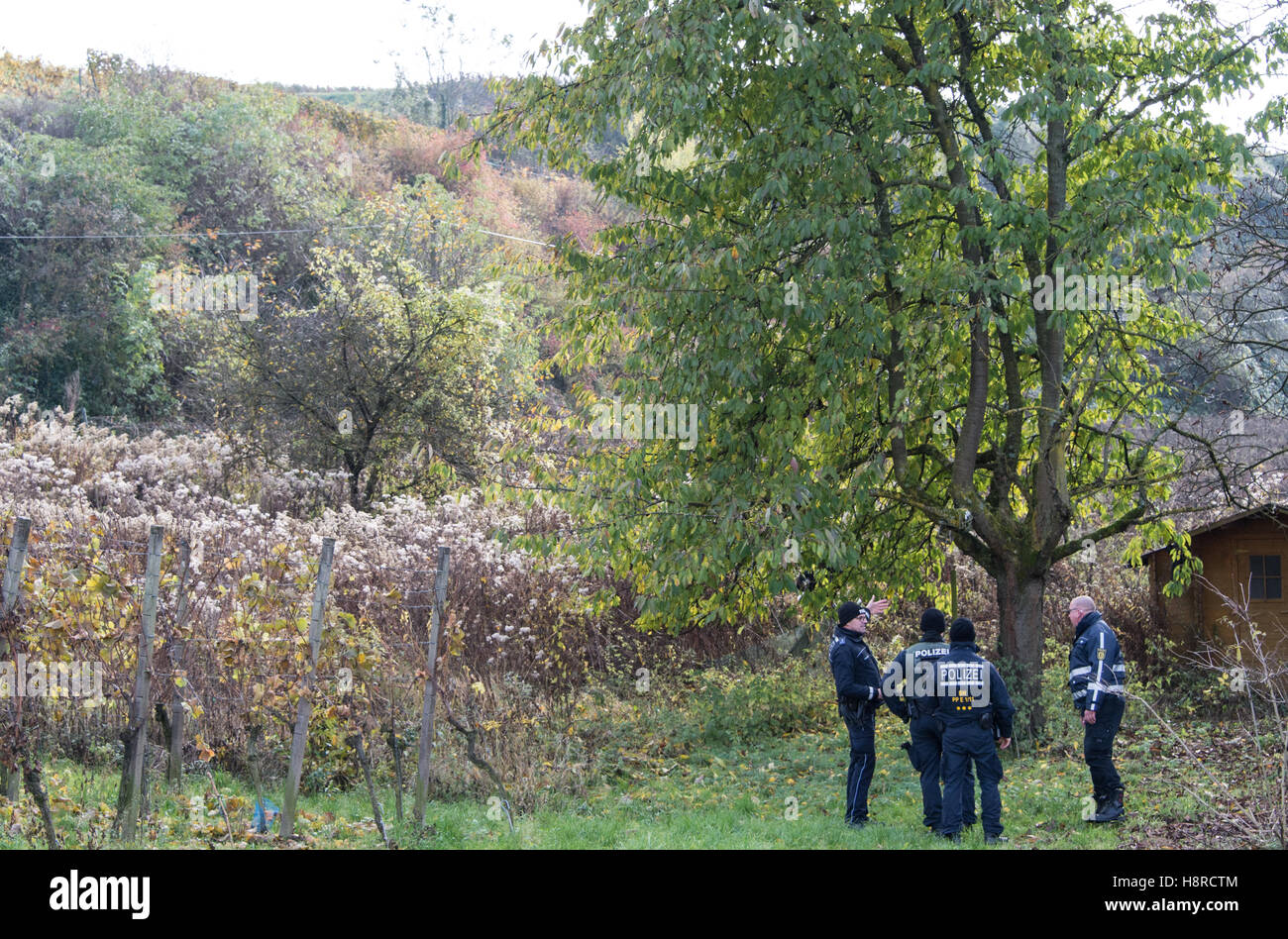 Police are looking for a missing 27-year-old female jogger at a vineyard in Endingen, Germany, 08 November 2016. - Stock Image