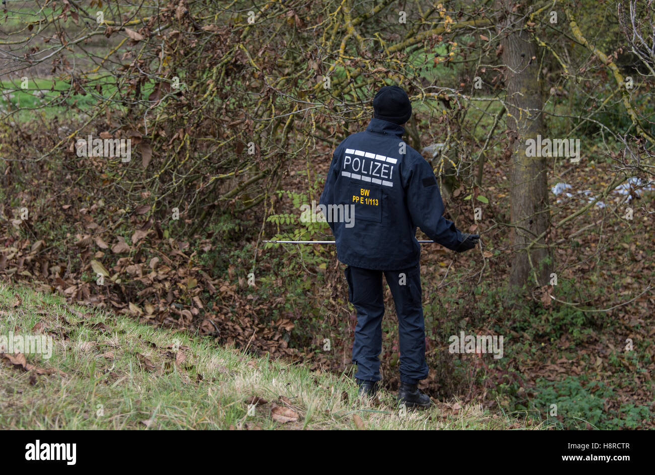 A police man is looking for a missing 27-year-old female jogger among grape vines in Endingen, Germany, 08 November - Stock Image