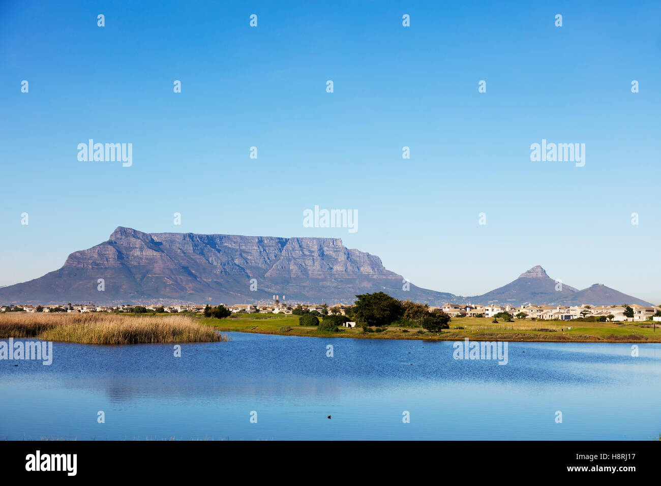 South Africa, Western Cape, Cape Town, Table Mountain and Woodbridge Island lighthouse - Stock Image