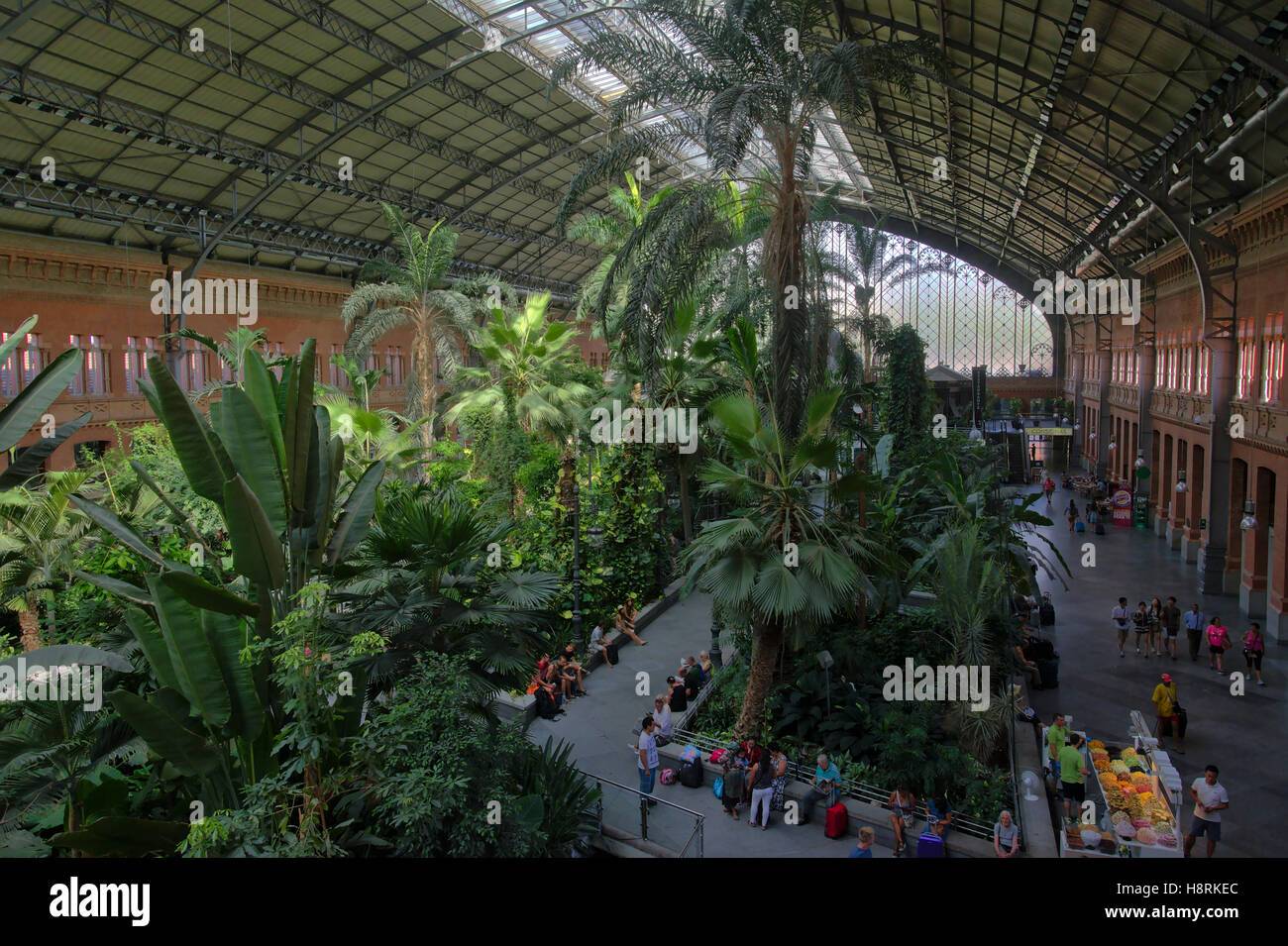 Tropical indoor garden in the hall of the atocha station in madrid tropical indoor garden in the hall of the atocha station in madrid workwithnaturefo