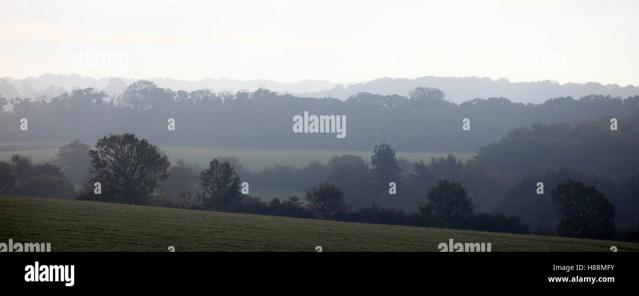 Hedgerows and pasture land seen from the Peddar's Way footpath near Ringstead in North Norfolk. - Stock Image