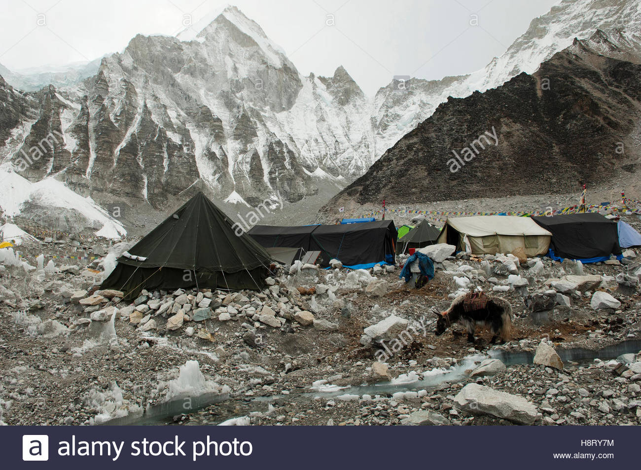 A campsite in the Himalayan Mountains. - Stock Image