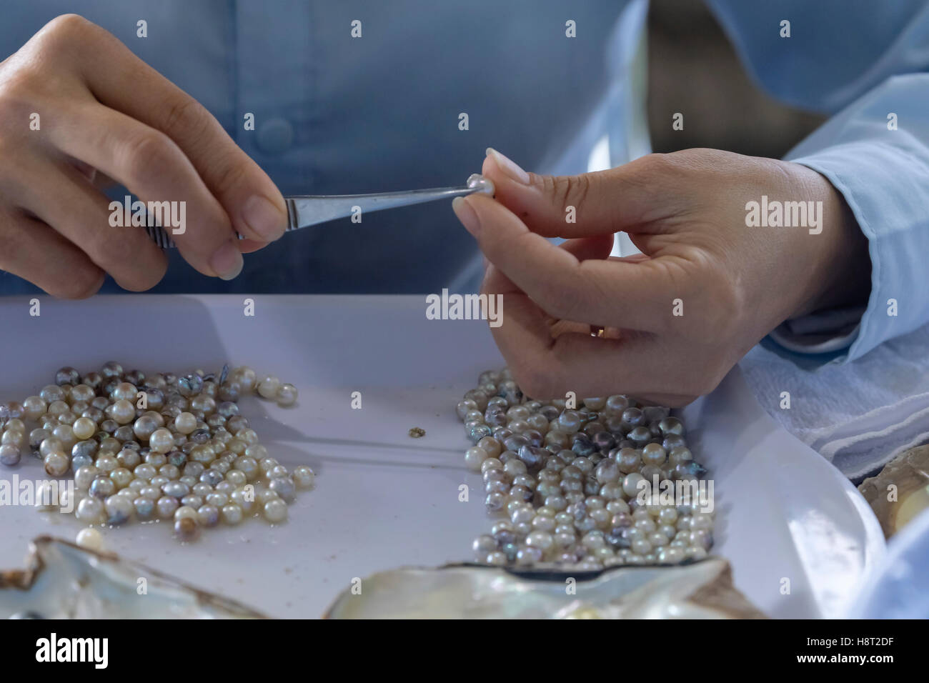 Vietnamese girls working in a pearl farm at Halong Bay, Vietnam, Indochina, Asia Stock Photo