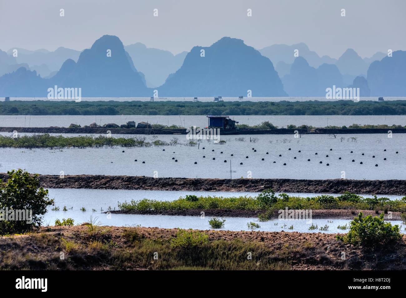 pearl farm at Halong Bay, Vietnam, Indochina, Asia - Stock Image