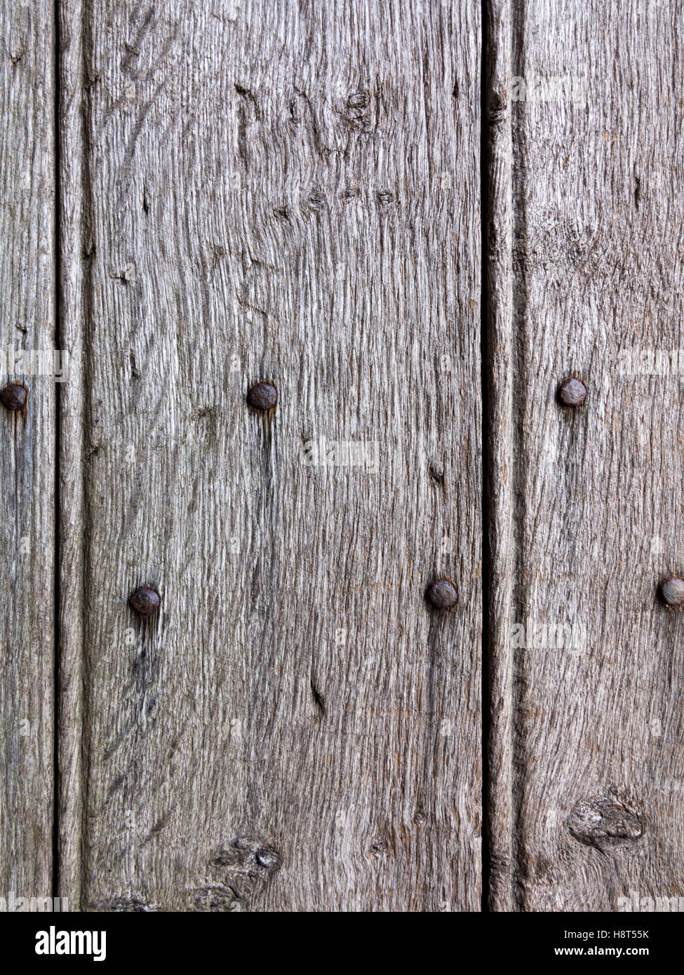Close up of antique oak door panel with metal studs - Stock Image - Old Oak Door Stock Photos & Old Oak Door Stock Images - Alamy