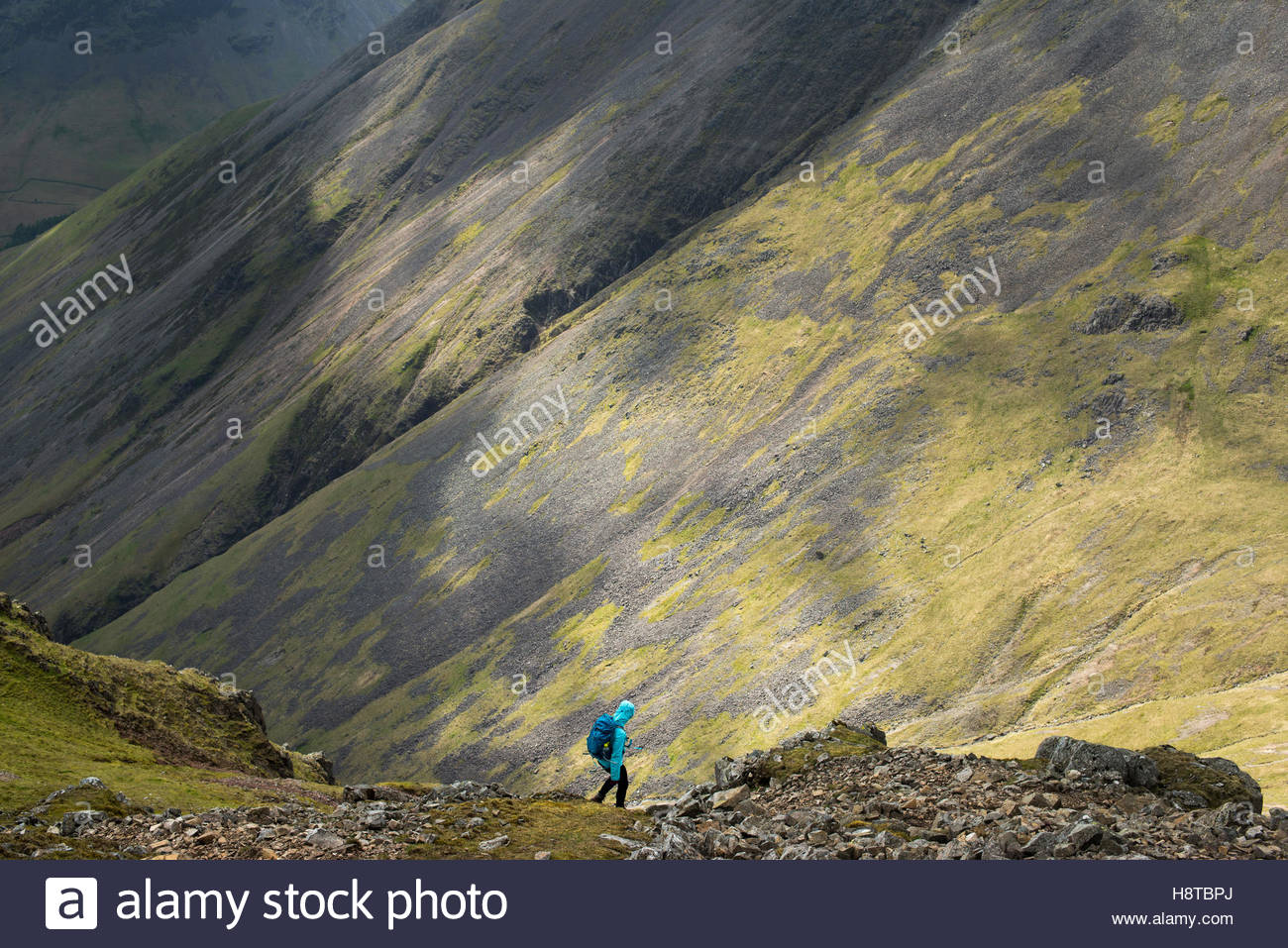 Descending on a scree slope from the top of Great Gable in English Lake District in Wast Water - Stock Image