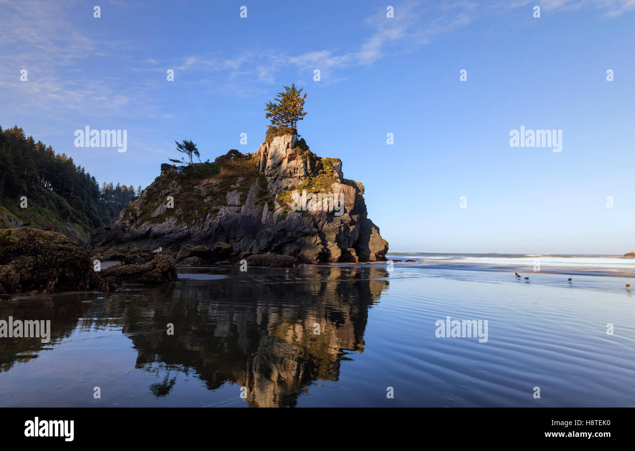 Rock formation reflecting off of  the wet sand. Hidden Beach, Del Norte Coast Redwoods State Park, California, USA. - Stock Image